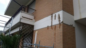 risanamento-esterno-palazzina (12)