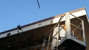 risanamento-esterno-palazzina (2)